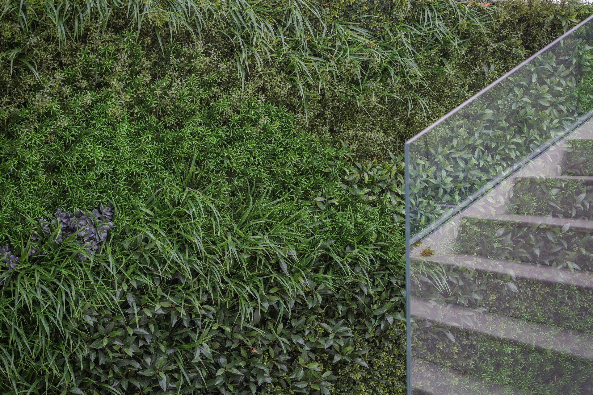 CE - Sydenham Villas - Outside - Details 002